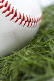 Baseball in Grass Macro Royalty Free Stock Photography