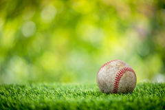 Baseball on grass. With nature green background Stock Photography