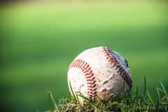 Baseball on a green field Royalty Free Stock Image