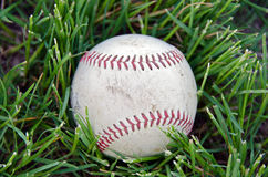 Baseball in green grass Stock Photo