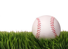 Baseball on Green Grass, isolated on white Royalty Free Stock Images