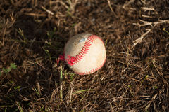 Baseball on the Ground Royalty Free Stock Photography