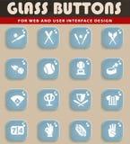 Baseball icon set. Baseball web icons for user interface design Royalty Free Stock Photo