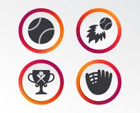Baseball icons. Ball with glove and bat symbols. Baseball sport icons. Ball with glove and two crosswise bats signs. Fireball with award cup symbol. Infographic Royalty Free Stock Images