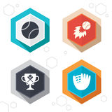 Baseball icons. Ball with glove and bat symbols. Hexagon buttons. Baseball sport icons. Ball with glove and two crosswise bats signs. Fireball with award cup Royalty Free Stock Image