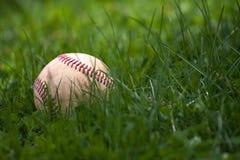 Baseball im Gras Stockfotografie