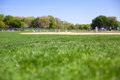 Baseball im Park Stockfotografie