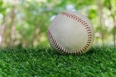 Baseball na zielonym gazonie Zdjęcie Stock