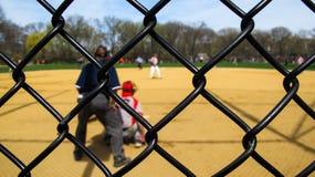 Baseball nel parco Immagine Stock