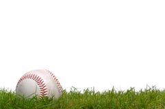 Baseball nell'erba Fotografie Stock Libere da Diritti