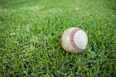 Baseball in Outfield Grass Stock Photo