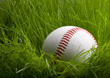 Baseball over young grass background Stock Images