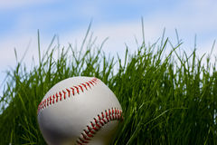 Baseball over young grass background. Macro of baseball hidden in green grass over blue sky background Stock Images