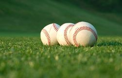 Baseball in the park. Close up of three baseballs on the field Stock Photo