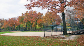 Baseball pitch Stock Images