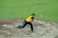 Baseball pitcher in action Stock Images