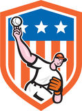 Baseball Pitcher Throw Ball Shield Cartoon