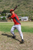 Baseball player starting his swing in a field Royalty Free Stock Photos