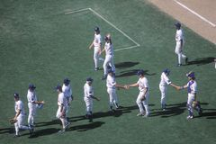 Baseball players greeting each other Royalty Free Stock Photography