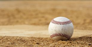 Baseball at rest Stock Photography