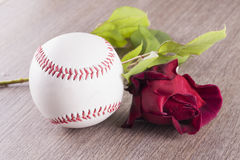 Baseball and rose Stock Image