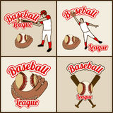 Baseball seals Stock Image