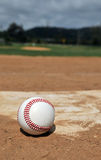 Baseball Season Royalty Free Stock Image