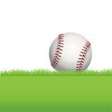 Baseball Sitting on Green Grass Illustration Stock Image