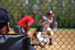 Baseball Spectator. Man with baseball cap watching a baseball game Royalty Free Stock Photography