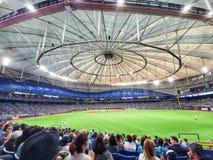 baseball sport stadio tampa raggi fotografie stock