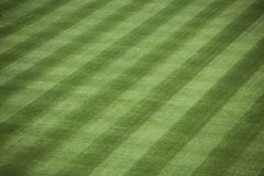 Baseball Stadium Grass royalty free stock photography