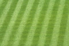 Baseball Stadium Grass. Major League baseball stadium grass Stock Photos