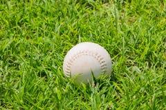 Baseball sull'erba verde fresca Immagini Stock Libere da Diritti