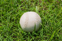 Baseball sull'erba verde fresca Fotografie Stock Libere da Diritti