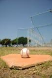 Baseball sulla zolla domestica Fotografia Stock Libera da Diritti