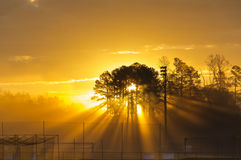Baseball Sunrise Royalty Free Stock Image