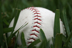 Baseball. In the tall grass Stock Photos