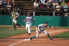 Baseball - Tjeckien och Australien Fotografering för Bildbyråer