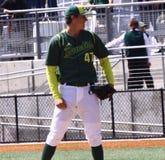 baseballa Oregon uniwersytet Obrazy Stock