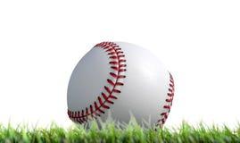 Baseballboll som vilar på gräs Fotografering för Bildbyråer