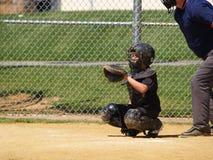 Baseballfangfederblech Lizenzfreies Stockfoto