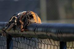 Baseballhandskar i Dugout Royaltyfri Bild