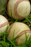 Baseballs. A group of three baseballs in the grass next to the fence Stock Image