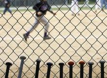 baseballslagträn royaltyfri bild