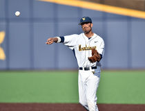 2015 basebol do NCAA - WVU-TCU Fotografia de Stock Royalty Free