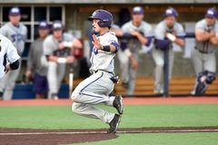 2015 basebol do NCAA - WVU-TCU Fotografia de Stock Royalty Free