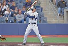 2015 basebol do NCAA - WVU-TCU Fotos de Stock Royalty Free