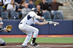 2015 basebol do NCAA - WVU-TCU Foto de Stock
