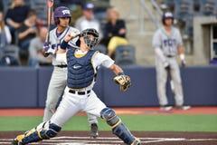 2015 basebol do NCAA - WVU-TCU Foto de Stock