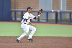 2015 basebol do NCAA - WVU-TCU Imagem de Stock